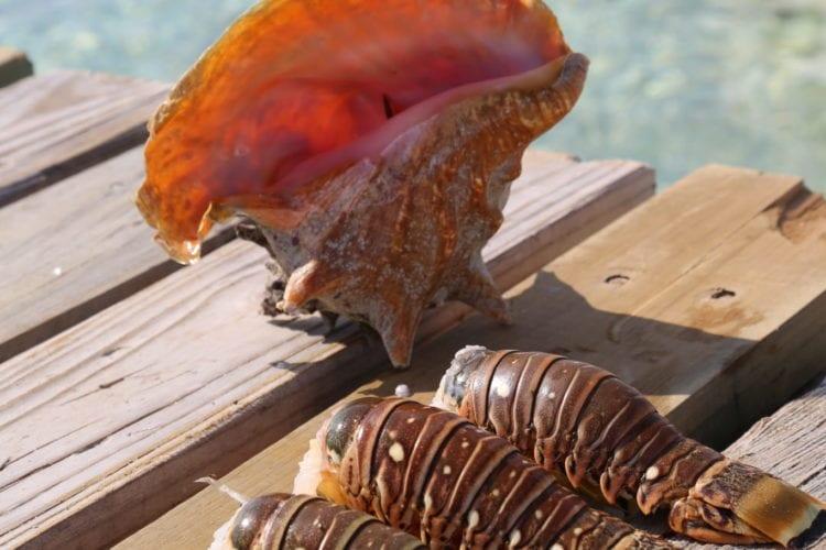 1ea32b49dd877 Latest CC+L Travel News - Caribbean Culture and Lifestyle